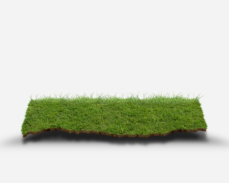 CG synthesis of shelf of lawn