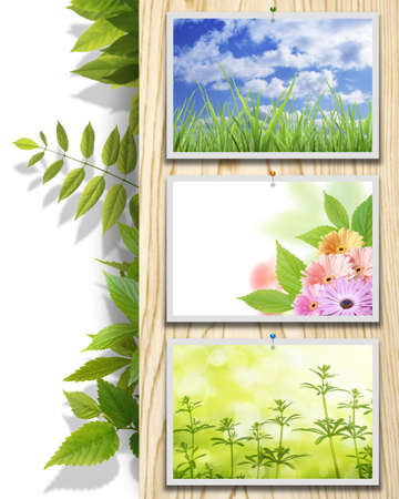 Environmental image photo