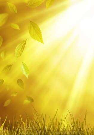 Image of falling leaf photo