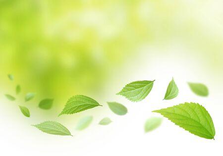 Environmental image 版權商用圖片