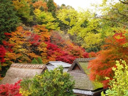 Scenery of Japan Stock Photo