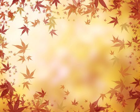 Autumnal-leaves image