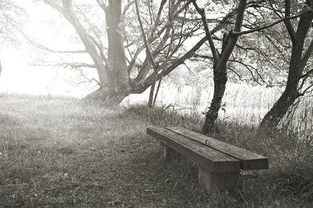blackandwhite: Bench Stock Photo