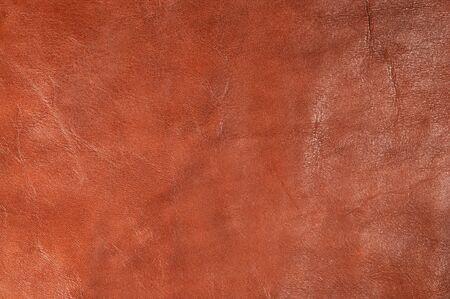 Leather Stock Photo - 22503958