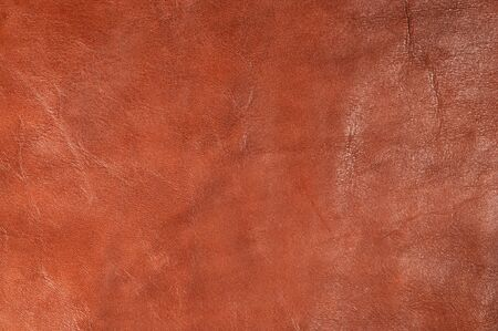 Leather Stock Photo - 22503958