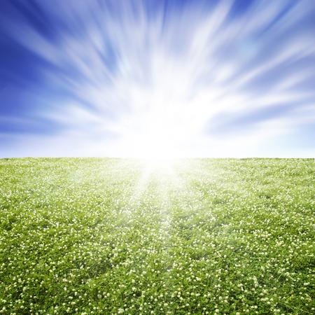 naturally: Environment image