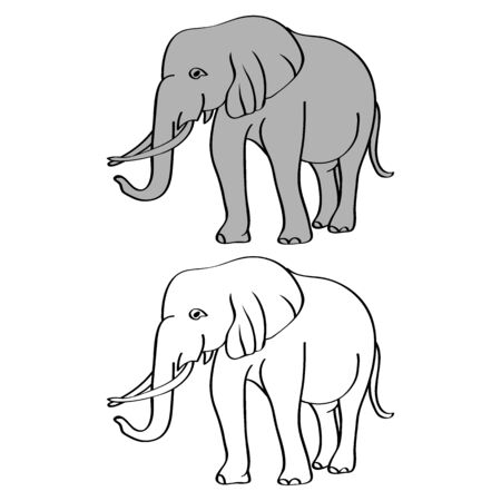 African bush or forest elephant and Asian elephant. Has large ears, concave back, wrinkled skin, sloping abdomen. Sticker for children. Vector, EPS 10
