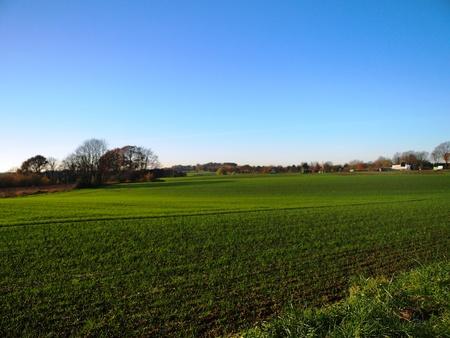 Europe Autumn Grassland