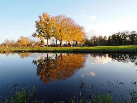 Breath-taking mirror pond reflection of autumn scene