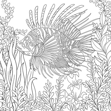 pterois volitans: stylized cartoon zebrafish (lionfish,pterois volitans) is swimming around plants. Sketch for adult antistress coloring page.  doodle, design elements for coloring book.