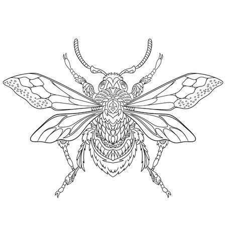 escarabajo: estilizada insecto escarabajo de la historieta, aislado sobre fondo blanco. Boceto para colorear página del adulto antiestrés. garabato, elementos de diseño floral para dar color. Vectores