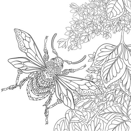 caricatura mosca: escarabajo de la historieta estilizada de insectos que vuelan alrededor de las flores de sakura. Boceto para colorear página del adulto antiestrés. garabato, elementos de diseño floral para dar color. Vectores