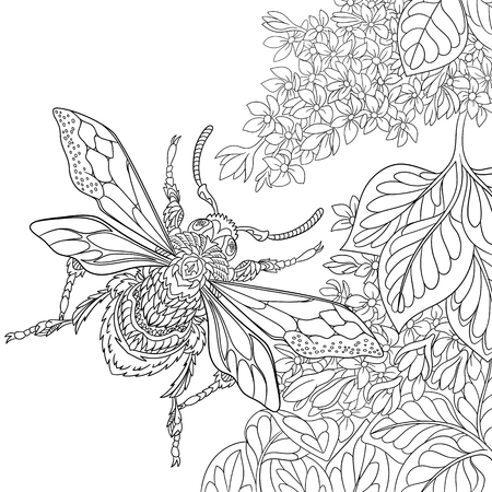 sakura flowers: stylized cartoon beetle insect flying around sakura flowers. Sketch for adult antistress coloring page.  doodle, floral design elements for coloring book.