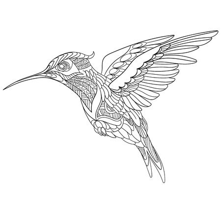 paper art: stylized cartoon hummingbird, isolated on white background. Sketch for adult antistress coloring page. doodle,  floral design elements for coloring book.