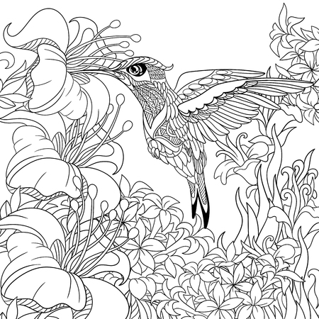 exotic birds: stylized cartoon hummingbird flying around flowers full of nectar. Sketch for adult antistress coloring page. doodle, floral design elements for coloring book.
