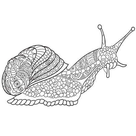 antistress: Zentangle stylized cartoon snail, isolated on white background. Sketch for adult antistress coloring page. Hand drawn doodle, zentangle, floral design elements for coloring book.