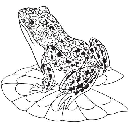 lirio blanco: rana estilizada de dibujos animados,