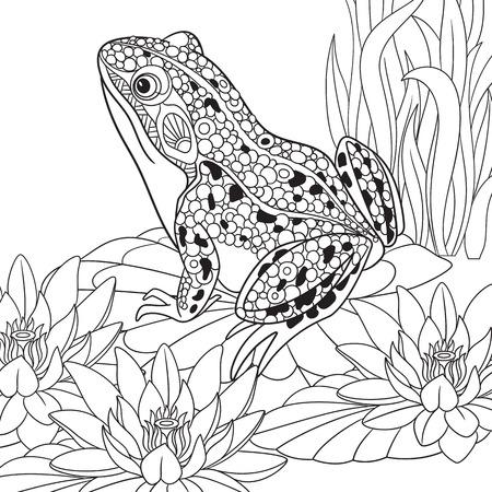 연꽃, 물 백합 가운데 앉아 Zentangle 양식에 일치시키는 만화 개구리. 성인 안티 스트레스 색칠 페이지에 대한 스케치. 손으로 그린 낙서, 색칠하기