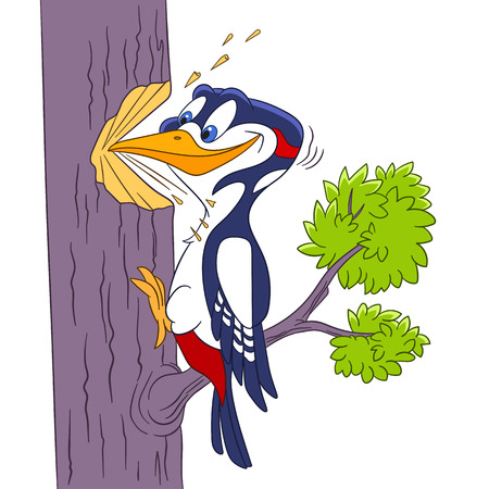 hardworking: cute and hardworking cartoon forest bird woodpecker, isolated on a white background