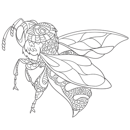 cartoon bee insect (bumblebee), isolated on white background. Sketch for adult antistress coloring page. Hand drawn doodle, floral design elements for coloring book. 向量圖像