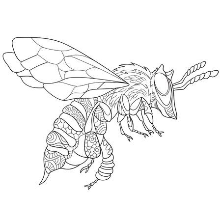 Abeja De Dibujos Animados De Insectos (abejorros), Aislado En Fondo ...