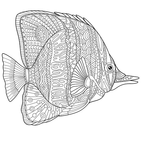 stylized cartoon butterfly fish, isolated on white background 일러스트
