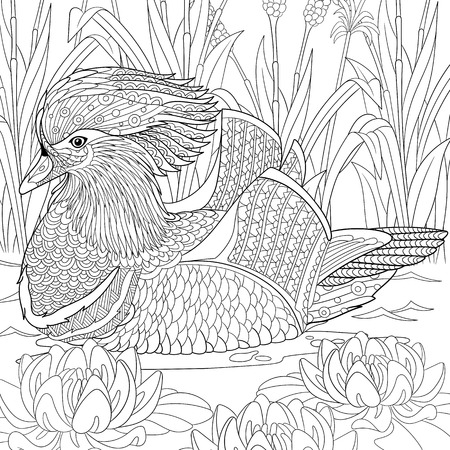stylized cartoon mandarin duck swimming among water lilies flowers.