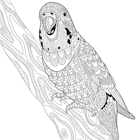 periquito: Estilizada loro periquito historieta que se sienta en rama de árbol