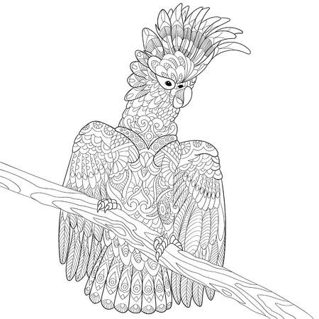 antistress: stylized cartoon cockatoo parrot and wooden tree branch.  sketch for adult antistress coloring page, T-shirt emblem,  tattoo with doodle, floral design elements.