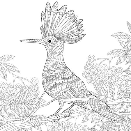 rowan tree: Stylized hoopoe (Upupa epops) sitting on tree branch among rowan berries. Freehand sketch for adult anti stress coloring book page with doodle elements.