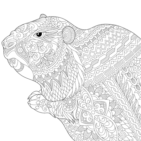 Stylized groundhog (gopher, marmot, woodchuck or beaver), isolated on white background. Freehand sketch for adult anti stress coloring book page with doodle elements.