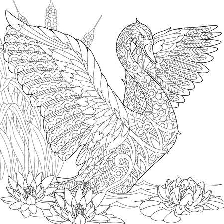 waterlily: Stylized beautiful swan among water lilies (lotus flowers) and reed grass. Freehand sketch for adult anti stress coloring book page with doodle elements.