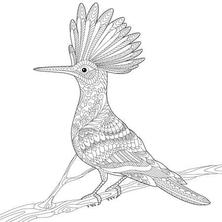 Stylized hoopoe bird (Upupa epops) sitting on tree branch, isolated on white background.