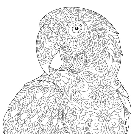 parakeet: Stylized macaw (arara) parrot, isolated on white background. Freehand sketch for adult anti stress coloring book page with doodle and zentangle elements.