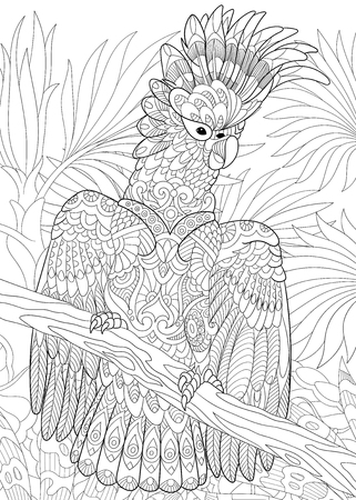 cockatoo: Stylized cartoon cockatoo parrot in tropical forest jungle. Freehand sketch for adult anti stress coloring book page with doodle and zentangle elements.