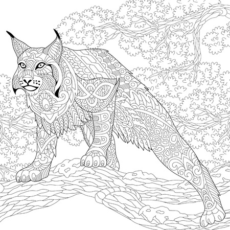 Stylized hunting wildcat (lynx, american bobcat, caracal) ready to attack. Freehand sketch for adult anti stress coloring book page with doodle and zentangle elements.