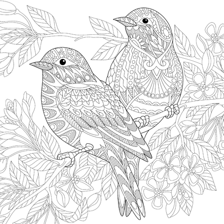 Stylized two sparrows sitting on blooming tree branch. Freehand sketch for adult anti stress coloring book page with doodle and zentangle elements. Illustration