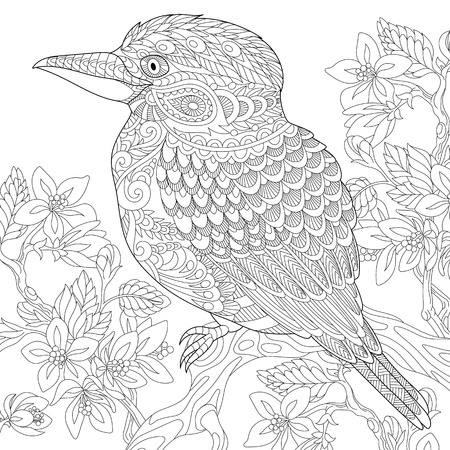 Stylized australian kookaburra bird and cherry blossoming tree. Freehand sketch for adult anti stress coloring book page with doodle and zentangle elements. Illustration
