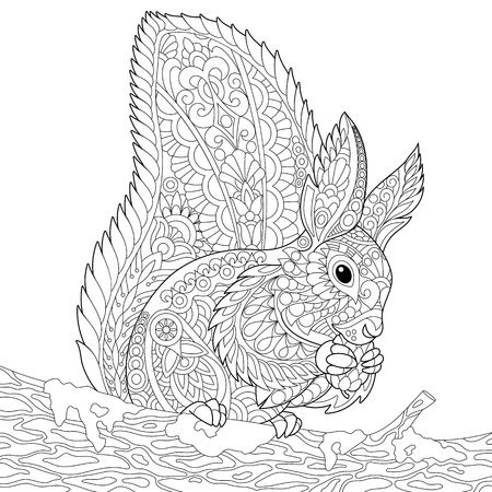 Stylized squirrel sitting on a tree branch and eating pine cone. Freehand sketch for adult anti stress coloring book page with doodle and zentangle elements.