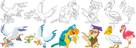 Cartoon animals set. Collection of birds. Aquatic seagull, fish, stork, frog, macaw (arara) parrot eating banana, owl in graduation cap holding book, pelican, flamingo. Coloring book pages for kids.