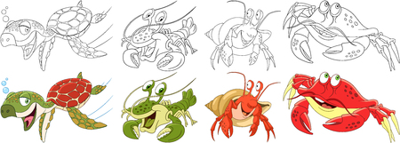 arthropoda: Cartoon animals set. Collection of arthropods and creeping reptilians. Turtle (tortoise, terrapin), hermit crab, lobster, crayfish, crawfish. Coloring book pages for kids.