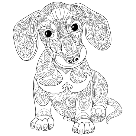 Coloring book page of dachshund puppy dog, isolated on white background. Freehand sketch drawing for adult antistress colouring with doodle and zentangle elements.