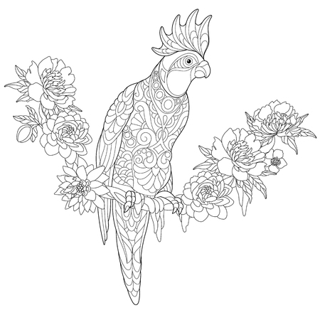 Coloring page of cockatoo parrot sitting on tropical liana with flowers. Freehand sketch drawing for adult anti stress coloring book with doodle and zentangle elements.