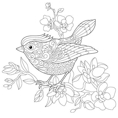 Dibujo para colorear página de pájaro gorrión sentado en la rama de árbol florecimiento de manzana. Dibujo de bosquejo a mano alzada para el colorante antistress adulto con elementos doodle y zentangle. Ilustración de vector