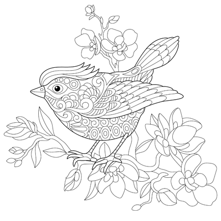 Coloring book page of sparrow bird sitting on apple blossoming tree branch. Freehand sketch drawing for adult antistress colouring with doodle and zentangle elements.