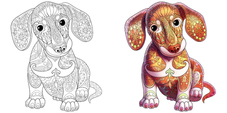 Coloring book page of dachshund puppy dog. Monochrome and colored samples.