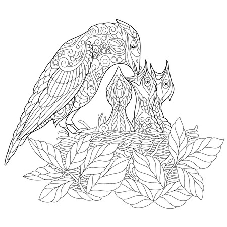 Coloring book page of jay bird feeding its newborn nestlings. Freehand sketch drawing for adult antistress colouring with doodle and zentangle elements. Stock Illustratie