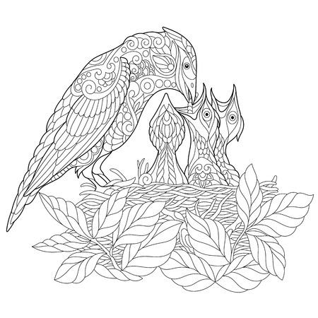 Page de livre de coloris de l'oiseau jay alimentant ses nichoirs nouveau-nés. Dessin d'équisse à main levée pour la coloration antistress adulte avec les éléments doodle et zentangle. Banque d'images - 80834696