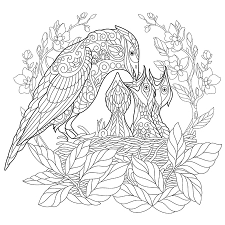 Coloring book page of jay bird feeding its newborn nestlings. Freehand sketch drawing for adult antistress colouring with doodle and zentangle elements. Illustration