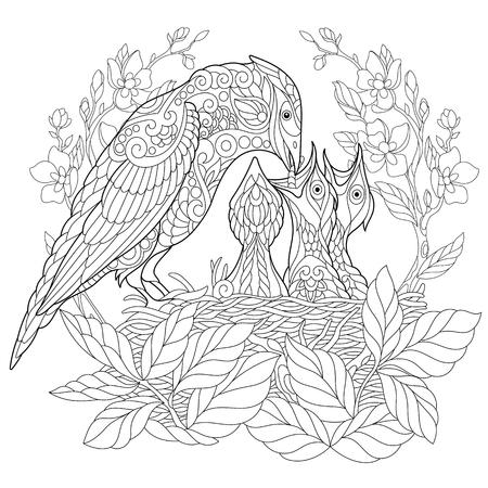 Pagina del libro di colorazione dell'uccello di Jay che alimenta i suoi neonati neonati. Disegno di schizzo a mano libera per la colorazione antistress adulta con elementi doodle e zentangle. Archivio Fotografico - 81893715